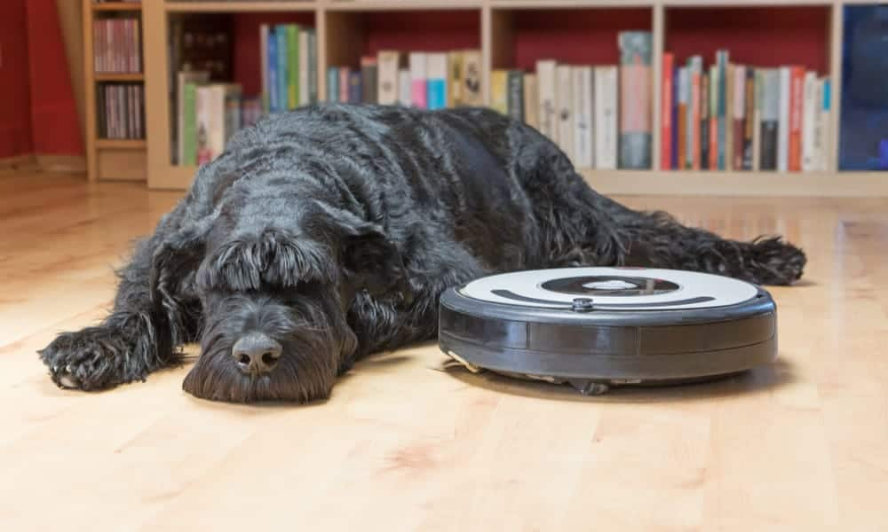 Best-Robot-Vacuum-For-Pet-Hair
