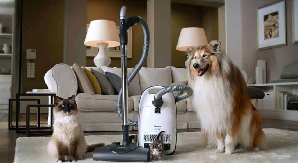 Miele-Complete-C3-vacuum-for-pet-hair
