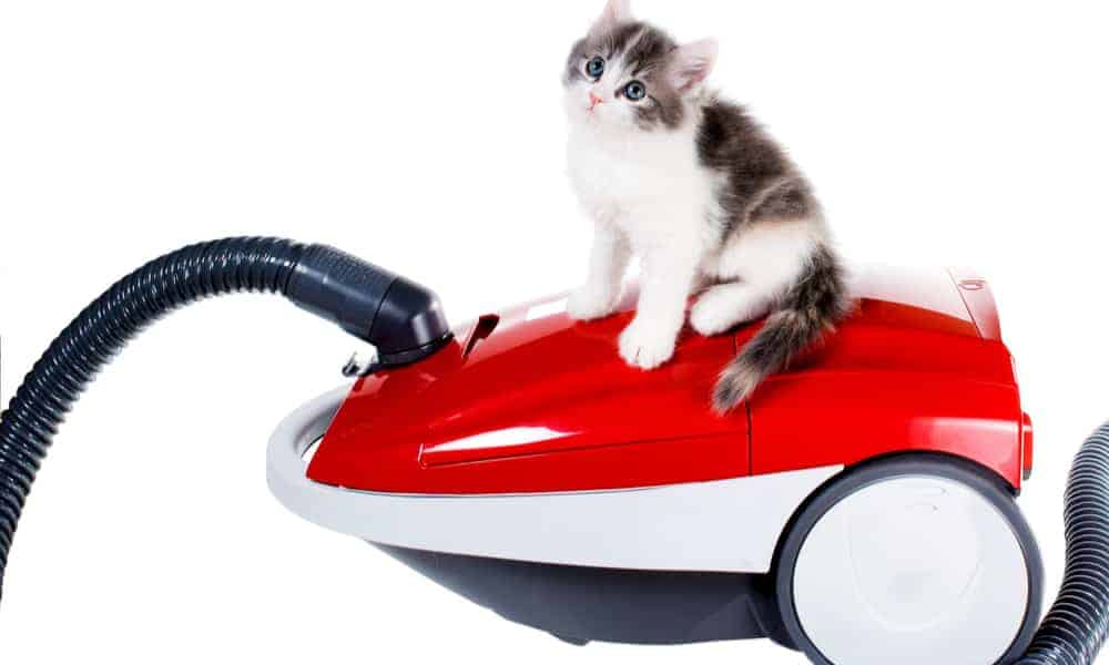 best-vacuum-cleaner-for-pet-hair