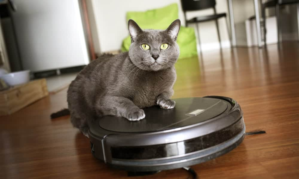 pet-vacuum-cleaner